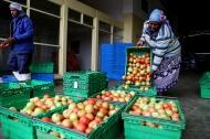 """سازمان غذا و کشاورزی ملل متحد """"سال بین المللی میوه و سبزیجات 2021"""" سازمان ملل را راه اندازی کرده است"""